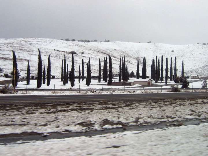 Photo Taken January 24, 2008 on Highway 58 East